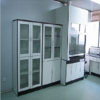 湖州试剂柜:寻求优质的全木药品柜 全钢药品柜 PP药品柜行情价格