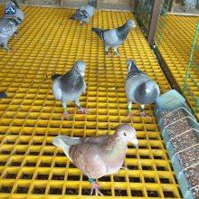 养鸽子养鸡25厚养殖专用小孔板哪里有卖的1米宽 1.22宽的 河北华强 漏粪板