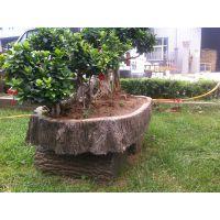 郑州天艺厂家直销仿木盆景水泥产品