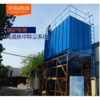 厂家直销大型燃煤锅炉布袋除尘器 循环流化床锅炉脱硫除尘器