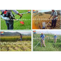 园林造景修剪绿篱机 轻便式割草机芦苇割草机 英达机械厂
