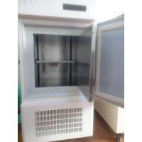 永佳-60度56升超低温双锁冰箱小型家用低温冰箱