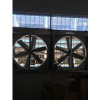 东莞负压风机,工业排风扇安装找旭恒环保设备厂家