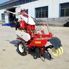 圣鲁田园管理设备 优质田园开沟机 大型农用田园管理机
