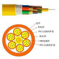 厂家直供耐斯龙24芯单模室内单元光缆 低烟无卤阻燃外护套 可定制
