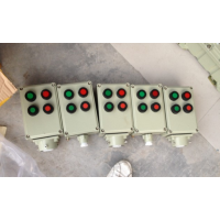 供应BZC51-A2D2G挂式防爆操作柱两灯两钮