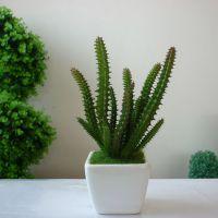 仿真热带绿色植物小盆栽 仙人柱 配陶瓷花盆