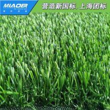 【供应】人工塑料草坪每平方价格【进出口等级标准】
