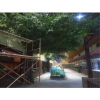 仿真榕树餐厅造景 广州假树定做 榕树装修工程施工玻璃钢材质