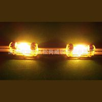 24VLED保险丝灯 氙气双尖保险丝灯 硬质线条灯 暗槽灯带 走珠灯