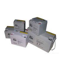美国WILL蓄电池-6GFM-38-威尔蓄电池