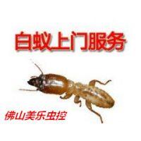 佛山杀虫灭鼠除四害公司,如何灭白蚁的?灭白蚁的方法