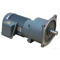 大连空调泵配件GHW22台湾贞熙齿轮马达