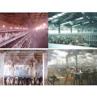 专业承接设计安装畜牧业养殖场喷雾消毒杀菌装置设备