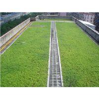 售抚州小区绿化塑料排水板)洛阳25H滤水板价格