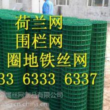浙江荷兰网 绿色养殖包塑铁丝网生产厂家