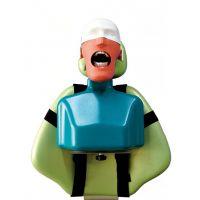HST-U3II型口腔肩体头模