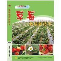 草莓栽培技术/病虫防治/种植业资料/正版视频教程/光盘和书籍