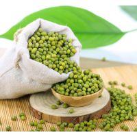 有机绿豆.五谷杂粮、草原基地种植。诚招代理。
