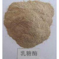 食品级乳糖酶 河北邯郸乳糖酶生产厂家