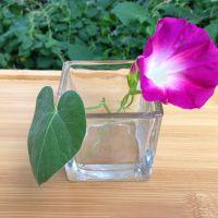 厂家直销 环保耐热高硼硅玻璃方形烛台 浪漫氛围婚庆烛台 批发