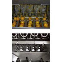 上海沃迪装备|柑橘橙子全果杯榨汁机工业榨汁专用高出汁率易操作