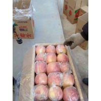 陕西红富士苹果批发价格走势图,膜袋红富士苹果价格行情