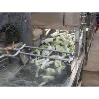 宜福达YQ-5000型小白菜清洗机/洗白菜机