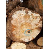 木材供应商加工 建筑木方刨光口料以及木龙骨