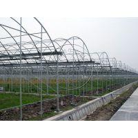 青州瀚洋热镀锌骨架单体温室大棚,连栋温室大棚承建专家