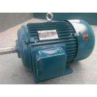 电机,昇瑞机电品牌产品,电机生产