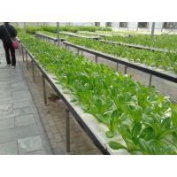 供应叶菜pvc-u水培管道 无土种植pvc管道