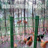 厂家销售包塑电焊养殖网 家禽散养隔离网