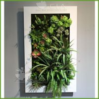供应仿真多肉植物壁挂画 室内铁艺边框仿真植物装饰画 绿植植物墙