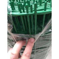 大乐丝网生产小孔绿色浸塑电焊网包塑铁丝网养鸡鸭网养葡萄网 围栏网波浪形护栏网