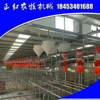 正红农牧供应饲喂设备 养猪料线 母猪限位栏 zh-184养猪器材