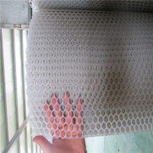 鸭舍防坠网 塑料过滤网 养鸭网多少钱