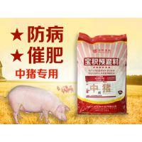 绿色无抗中猪预混料价格 中草药中猪饲料批发