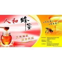 土蜂蜜供应商_蜂蜜颜色【好蜂蜜啊】