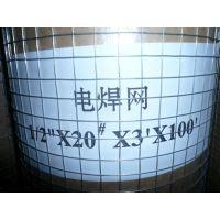厂家直销40丝电焊网/镀锌电焊网/