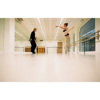欧氏供应深圳舞蹈地板 舞蹈地板厂家 舞蹈地胶品牌