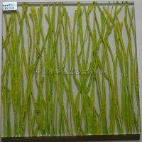 生态透光板 绿色植物夹层透光生态板 美溢品牌