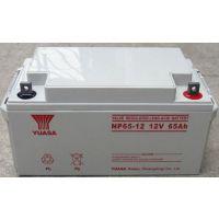 汤浅蓄电池NP100-12 营口总经销