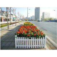 山东供应 优质 PVC草坪护栏 安全隔离围栏