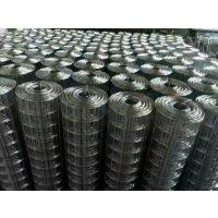 镀锌电焊网@不锈钢电焊网@安平不锈钢网厂
