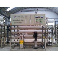 青州川一2t/h双级反渗透纯净水设备