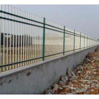 专业生产山东护栏网 隔离栏万通热线13561889297