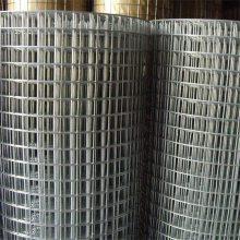 镀锌网片价格 养殖用铁丝网 不锈钢电焊网片