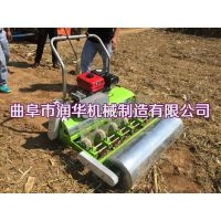 两行蔬菜播种机 人力白萝卜播种机 免间苗生菜精播机
