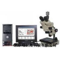 显微图像分析系统 RYS-XTZ-M 生产哪里购买怎么使用价格多少生产厂家使用说明安装操作使用流程